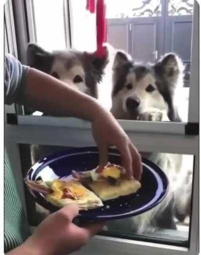 You get a sandwich