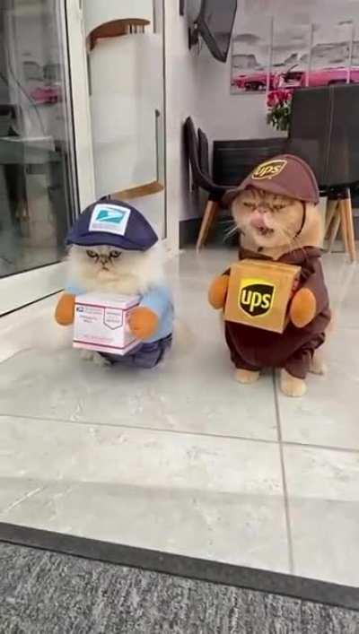 Your packages have arrived