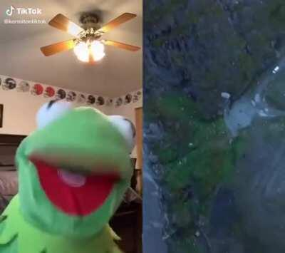 F for Kermit