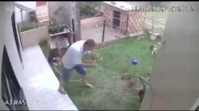 He put petrol in the hole to 'kill a rat'