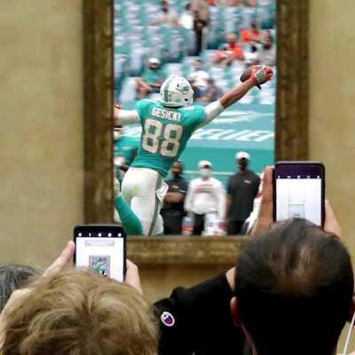 Had to put Mike Gesicki's one handed catch in a museum ¯\_(ツ)_/¯