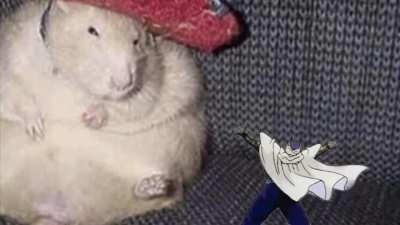 Piccolo and the rat