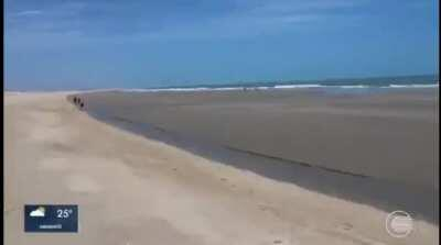 Quem ai é o dono dessa praia???
