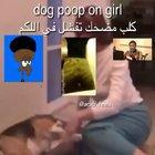 dog poop on girl bruh dog fard هذا حرام حتى لا أصدقه !! 😍😏