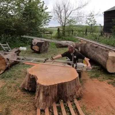 Specialized gas powered saw to cut thin slices of tree trunk