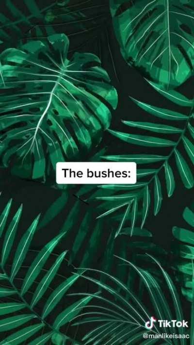 Everybody gangstar till the bushes start talking