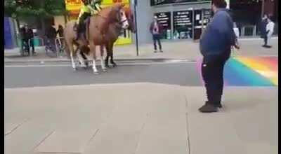 Homophobic police horses