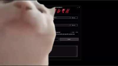 Vibing to the CODEX installer