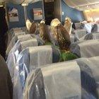 Rich chicks travelling in style!