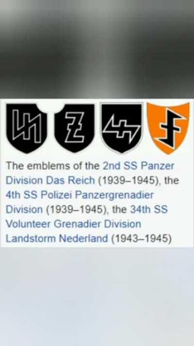 Tiktokers get matching tattoos without realizing it was a Nazi symbol