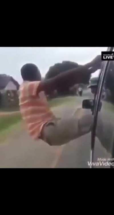 Wins stupid prize or idiot in car, you decide.