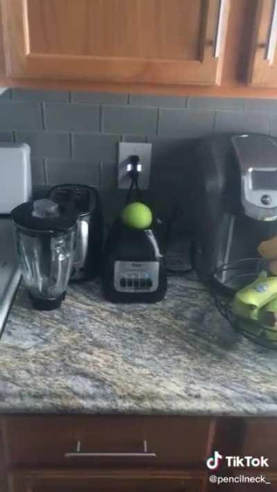 Apple on a blender