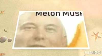 MELON MUSK 😔👊