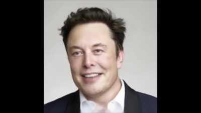 Elon Musk has some choice words about Venice