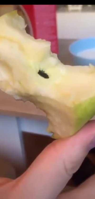 This man found a bug in his apple. Look closely.