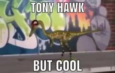 Tony Hawk But cool
