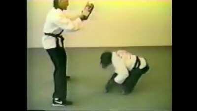 Monke teaches human the true wae of self defense