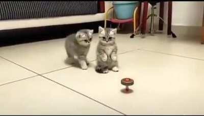 Wait no, don't touch it