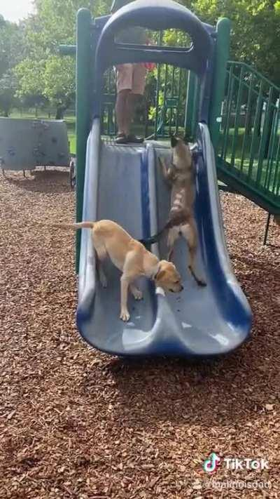 What is a slide?
