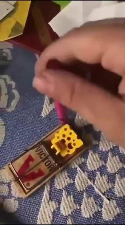 WCGW testing out a mousetrap with a crayon