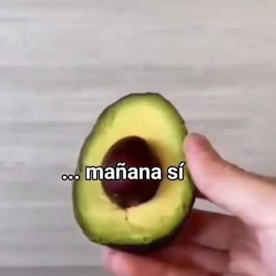 MAAU - Video #0214