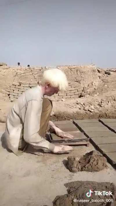 Albinos making bricks