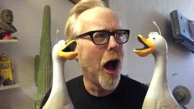 Adam Savage's Ducks