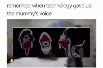 Perfectly cut mummy scream