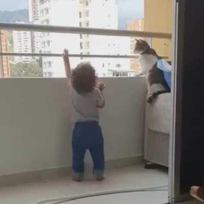 AnimalsBeingBros