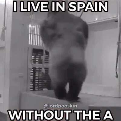 sáquenme de España