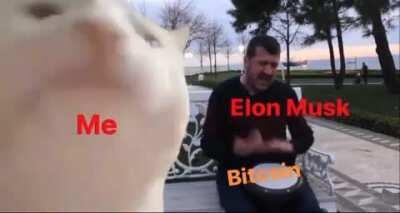 Welcome, Elon.