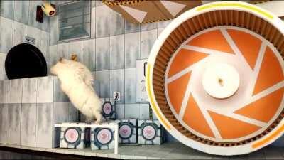 Hamster engineer