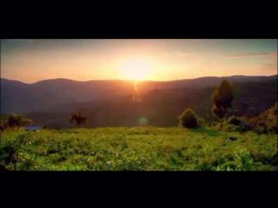 A Peaceful Ugandan Morning