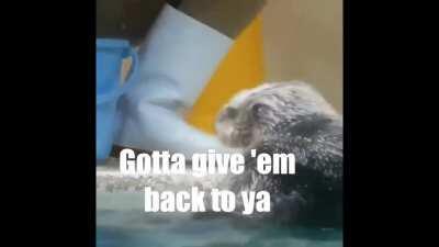 Inspector Otter