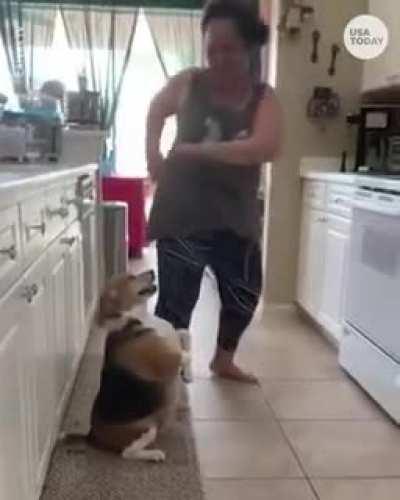 Dancing dog...