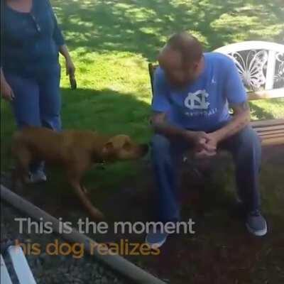 The dog doesn't recognise him until it sniffs!