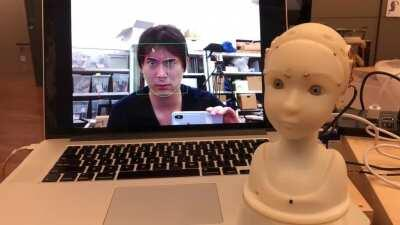 SEER has obtained real-time face-mirroring ability