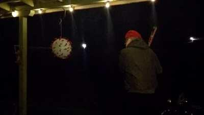 Happy New Smashing Covid Piñata Year!