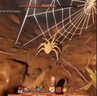 F you little spider