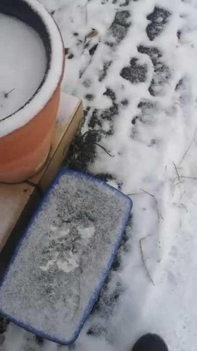 Ist ein bisschen her das bei mir Schnee lag. Muss ich mich wohl wieder dran gewöhnen.