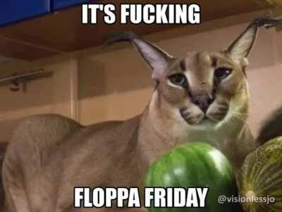 Floppa Friday boyyys