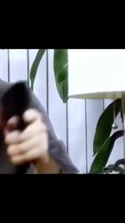 This video camera commercial