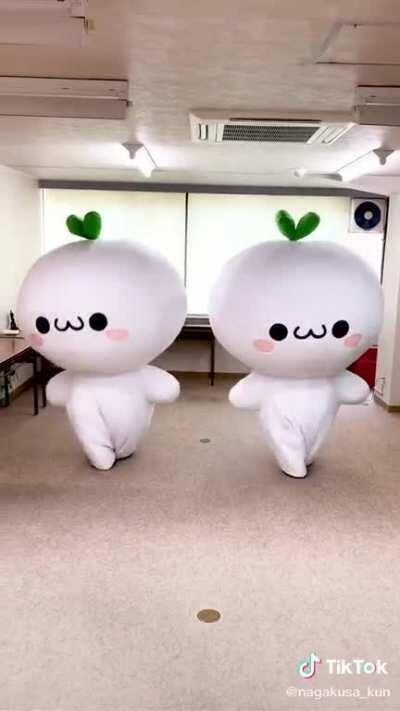 I think they're daikon radishes but I dunno