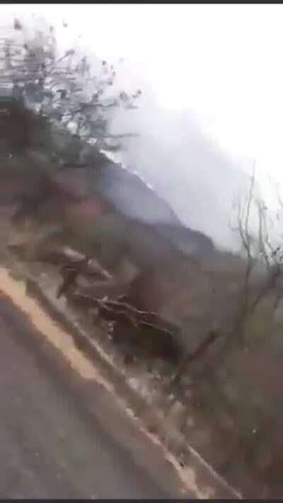 Here's footage of the ambush between CJNG and Mexican marines that occurred on Sunday (June 7, 2020)