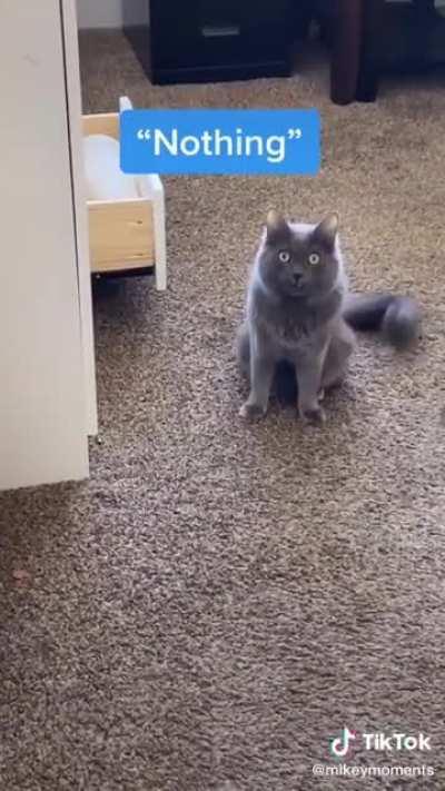 OH...hi mom...