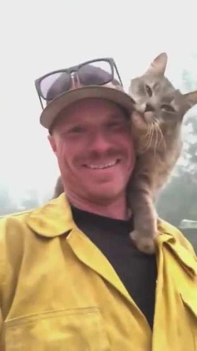 A firefighter being thanked by a very friendly cat after rescuing it from a wildfire