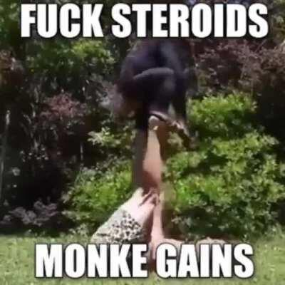 Monke Man: Master of the Monke Gains. Uses the Monke Style of fighting. Also has 2 monke pets that help him fight.