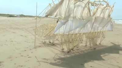 Theo Jansen has spent the last 28 years designing and building a series of wind-powered creatures called Strandbeests or