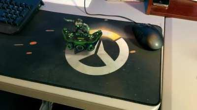 Caught Lucio Jammen on my Wife's Desk!