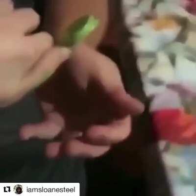 Still would eat it